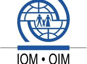 IOM Global Human Trafficking Database